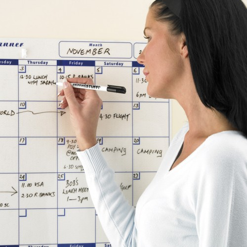 Dry-wipe Monthly Planner